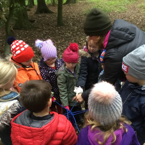 Forest school (7)