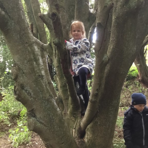 Forest School (5)